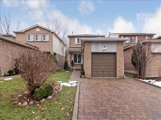 37 Constellation Cres